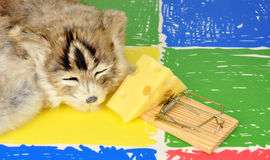 Cat And Mouse Trap Stock Images