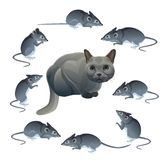 Cat and mouse vector illustration