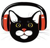 Cat music headphones. Black cat in the music headphones Royalty Free Stock Photo