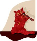 Cat musician Royalty Free Stock Photography
