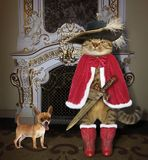 Cat with dog near a fireplace. The cat musketeer and his dog are standing next to a nice fireplace stock photography