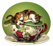 Cat n Cup Calico sleeping Stock Photo