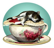 Cat n Cup Grey Tabby Stock Photo