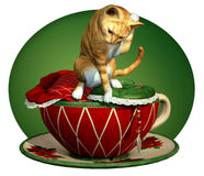 Cat n Cup Red Tabby Stock Photography
