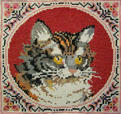 Cat needlework Stock Images