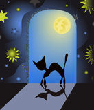 Cat in night. Cat in a night magic room vector illustration