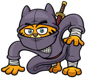 Cat Ninja Fotos de Stock