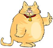 cat ok Стоковое Изображение