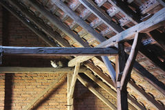 Cat on the old attic Royalty Free Stock Images