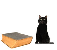 Cat and old book Royalty Free Stock Photos