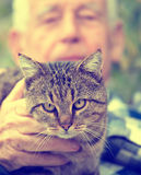 Cat in old man`s lap. Close up of cat sitting in old man`s lap and enjoying cuddling Stock Photos