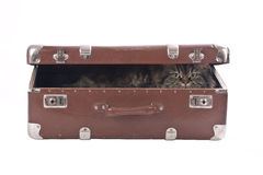 Cat in the old vintage suitcase Royalty Free Stock Photo