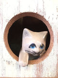 CAT. One white ceramic doll cat in hole of the wooden box Stock Images