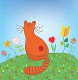 Cat outdoor in the flowers funny Royalty Free Stock Photography