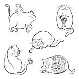 Cat in outline royalty free illustration