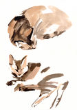 Cat painting sketch Royalty Free Stock Photos