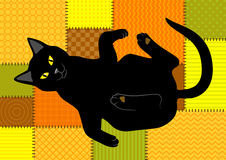 Cat on patchwork background. Black cat lying on patchwork background Royalty Free Stock Image