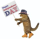 Cat patriot with banner. The cat patriot holds a banner with the text ` Happy Independence Day `. White background royalty free stock photography
