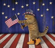 Cat patriot on stage. The cat patriot in a hat holds the American flag. It is on the stage royalty free stock images