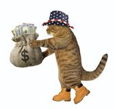 Cat patriot with a sack of money. The cat patriot in a hat holds the sack of money. White background stock image