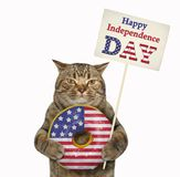 Cat with an american donut 2. The cat patriot is holding a big american donut and a poster -  Happy Independence Day. White background. Isolated royalty free stock images