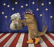 Cat patriot with a sack of money 2. The cat patriot in a hat holds the sack of money on the stage royalty free stock image