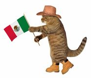 Cat with mexican flag. The cat patriot in a sombrero holds the flag of Mexico. White background stock images