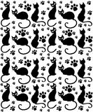 Cat Pattern Stock Photo