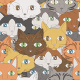 Cat Pattern Royalty Free Stock Photo
