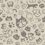 Cat pattern. With various faces, paws and asses Royalty Free Stock Image