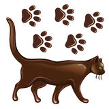 Cat & paw prints Stock Photography