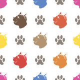 Cat Paw Seamless Animal Pattern Fotografia Stock Libera da Diritti