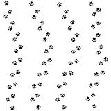 Cat paw track. Seamless animal pattern of paw footprint. Vector. Illustration Stock Photography