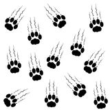 Cat paws with claws and scratches on white background Royalty Free Stock Images