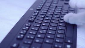 Cat Paws sur le clavier clips vidéos