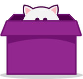 Cat Peeking out of Box Stock Images