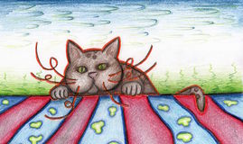 Cat peeking over the horizon. Royalty Free Stock Images
