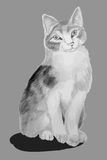 Cat pencil drawing children's (gray) Royalty Free Stock Photo
