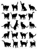 Cat Pet Animal Silhouettes Royalty Free Stock Photo