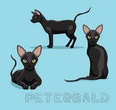 Cat Peterbald Cartoon Vector Illustration. Animal Cartoon EPS10 File Format Stock Photography