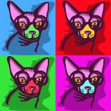 Cat picture Stock Photos