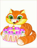 Cat and pie Royalty Free Stock Photography
