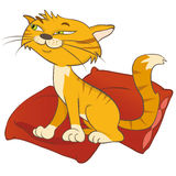 Cat on pillow. Cat on a pillow. Vector illustration Stock Photo