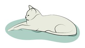 Cat on the pillow. Big, serious cat lies on the pillow. Vector illustration Royalty Free Stock Photos