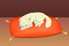 Cat on pillow. This is an illustration of the cat on pillow Royalty Free Stock Photo