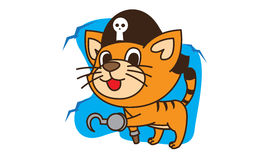Cat pirate Royalty Free Stock Photo