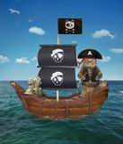 Cat pirate on the ship 2. The cat pirate in a tricorn with a knife is on a sailing ship in the open sea Stock Photography