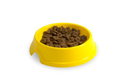 Cat plate with feed Stock Images