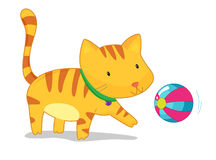 Cat playing with ball Stock Images