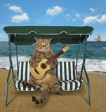 Cat playing the guitar on the beach. The cat musician with a acoustic guitar is sitting on a swing bench on the beach stock photo